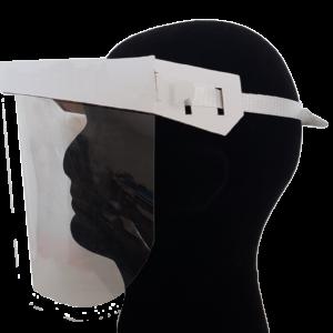SaniShield Full Face Visor